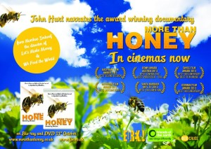 Bee More Than Honey flyer